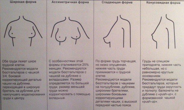 формы груди