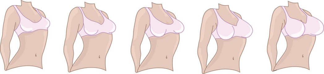 разные размеры груди