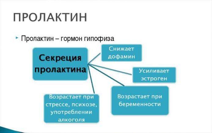 пролактин таблица
