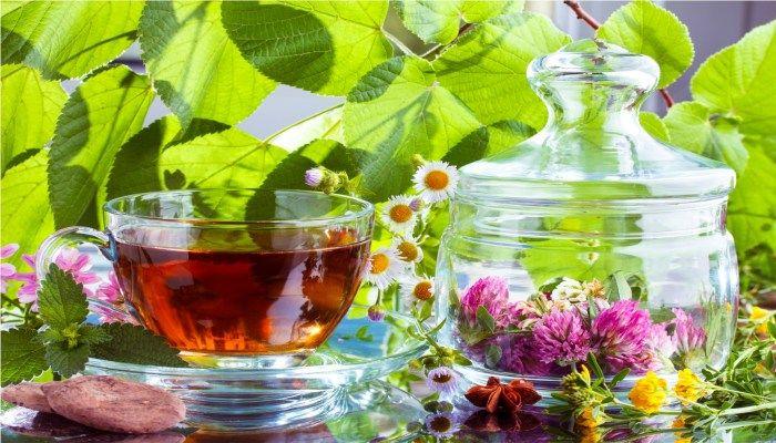 Травы для лечения груди