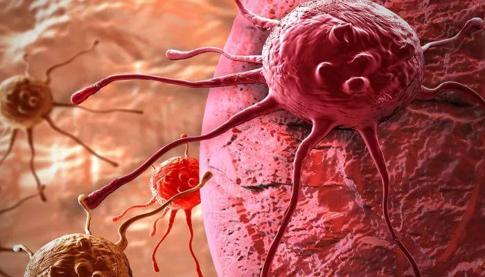 лечение рака молочной железы народными средствами