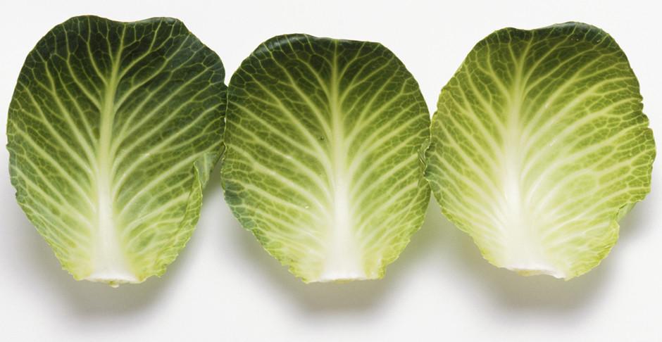 капустные листья