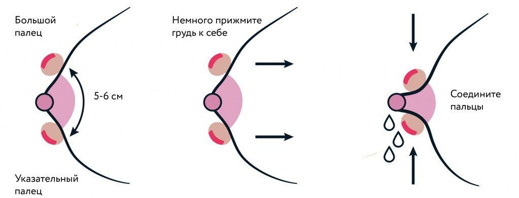 Правила ручного сцеживания